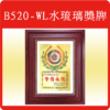 B520-WL水琉璃獎牌